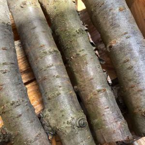 Fruit Wood Logs Cherry - 10kg