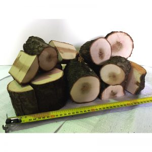 Fruit Wood Logs Plum - 10kg